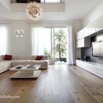 Modern living room with wood floor
